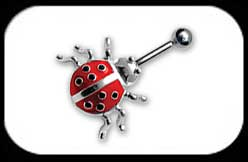 Lady Bug Belly Bar